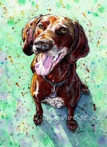smiling brown dog portrait
