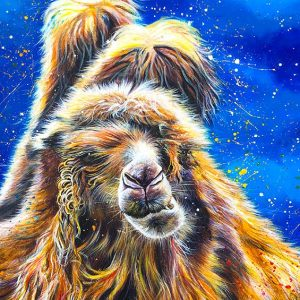 painting of characterful Casper camel