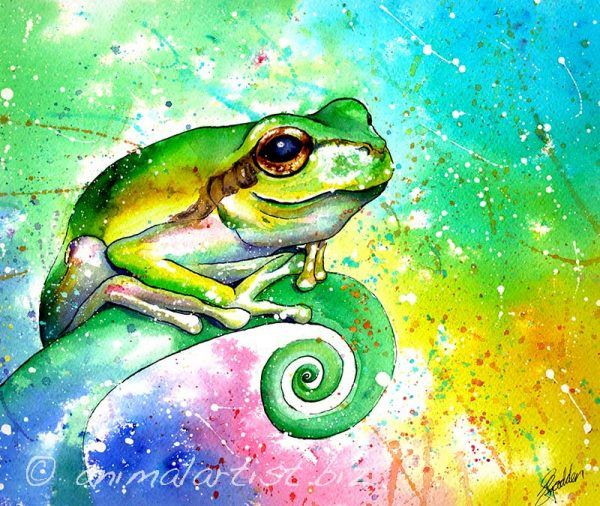 colourful frog painting