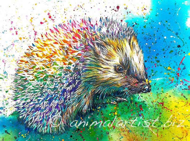 colourful hedgehog painting