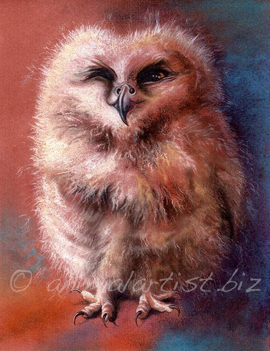 pastel painting of baby owl