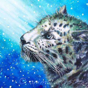 leopard cub watching snow