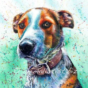 colourful orange dog portrait