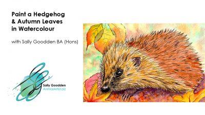 Hedgehog_Intro
