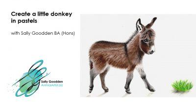 Donkey_Intro