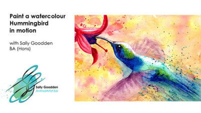 Humingbird_Intro_web