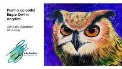 Owl_Intro_web